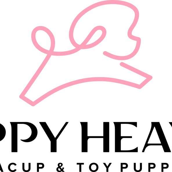 Puppy Heaven - Las Vegas